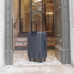 VALISE VUITTON ENTREE HOTEL